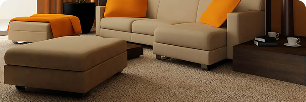 Adelaide Hills Carpet Cleaning